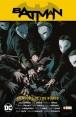 BATMAN SAGA (Nuevo universo parte 02): BATMAN: LA NOCHE DE LOS BÚHOS