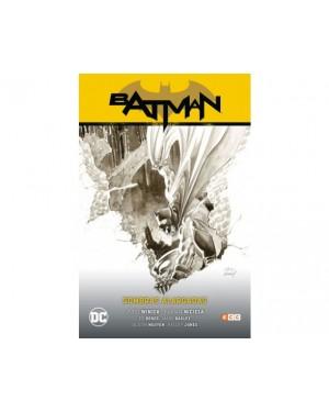 BATMAN SAGA (batman renacido parte 3): SOMBRAS ALARGADAS